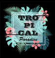 Tropical paradise T-shirt print background vector image