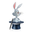 white rabbit and magic hat vector image