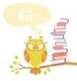 owl and books vector image