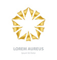 Gold Abstract star on white background Corporate vector image