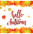 hello autumn horizontal seamless border vector image