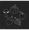 Hand Drawn Doodle Autumn Symbols vector image
