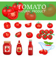 Set of tomatoes and sauces vector image