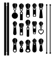 Set of different zippers vector image