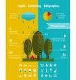 Growing Apple Garden Infographics Elements vector image
