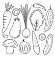 vegetable black icon set vector image