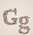 Decorated letter g vector image