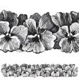 antique pansies border engraving vector image