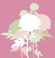 peon flowers vector image