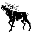 red deer black and white vector image vector image