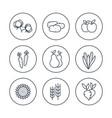 harvest line icons set vector image