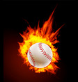 baseball ball on fire background vector image vector image