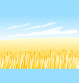 wheat field landscape vector image