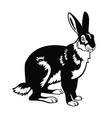 Sitting hare black and white image Vector Image