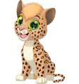 funny little leopard vector image