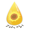 sunflower oil2 vector image