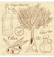 Hand drawn of a set olive Web vector image