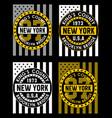 vintage new york brooklyn vector image