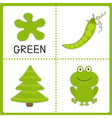 Learning green color Educational cards for kids vector image