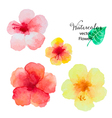 Set of watercolor hibiscus flowers vector image