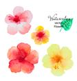 Set of watercolor hibiscus flowers vector image