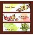 Herbs And Spices Banners vector image