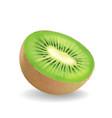 kiwi fruit on white background vector image