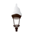 A street light vector image vector image