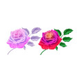 hand drawn rose blossoms with leaves set vector image