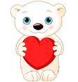 Valentine day polar bear vector image