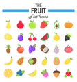 fruit flat icon set food symbols collection vector image