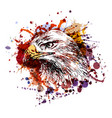 color of an eagle head vector image