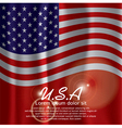 USA Flag Curtain vector image