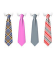 neck ties templates with plaid texture vector image