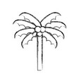 sketch draw beach palm cartoon vector image