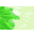 palm fronds vector image vector image