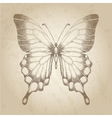 butterfly painted in graphic style points vector image
