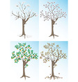 Apricot tree and the seasons vector image vector image
