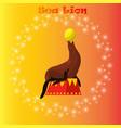 sea lion or seal balancing a ball vector image