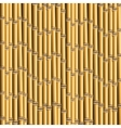Bamboo trunks background vector image