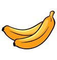 Two ripe bananas vector image