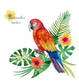 Watercolor parrot flowers and leaves vector image