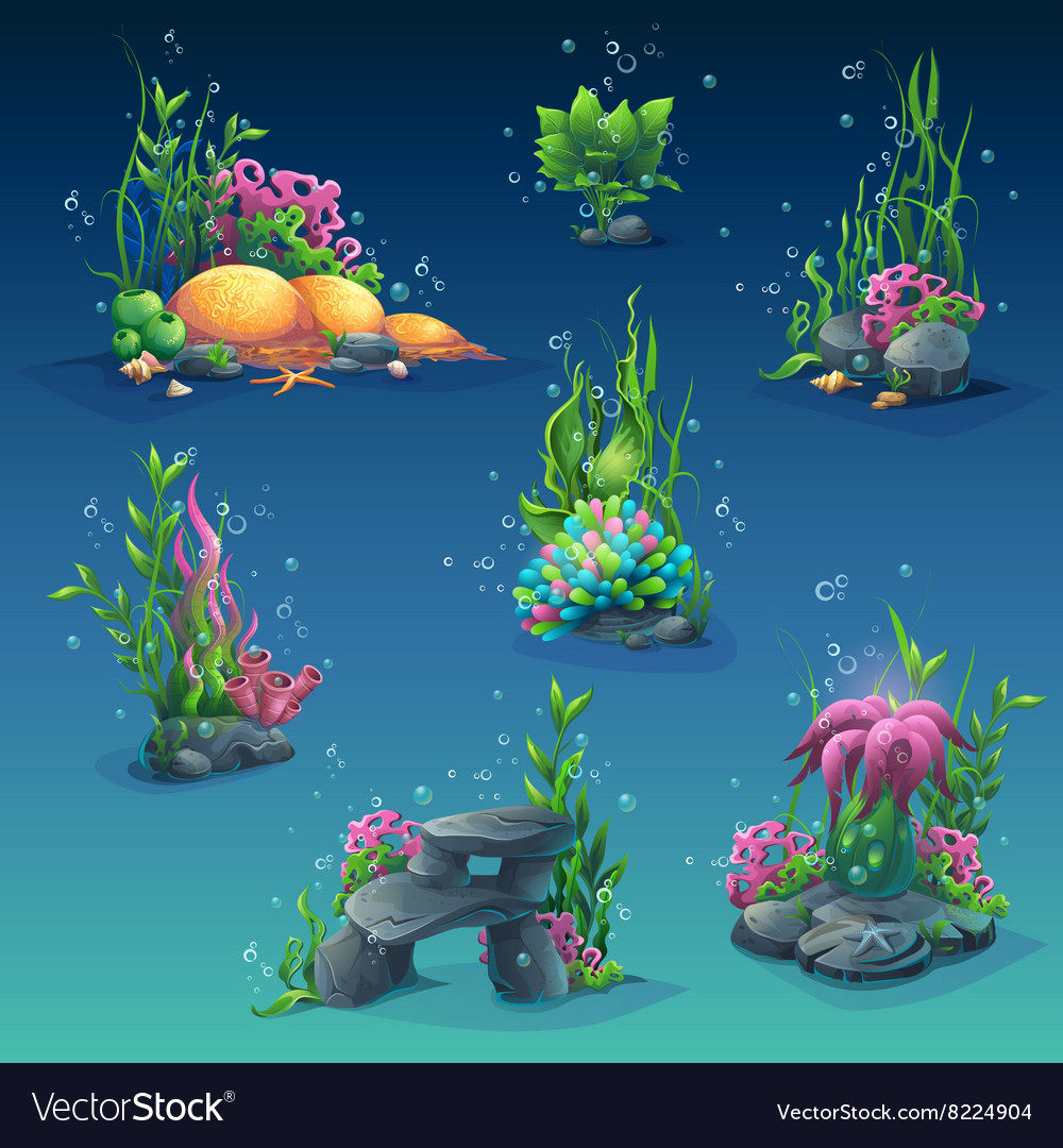 Collection of seaweed underwater vector