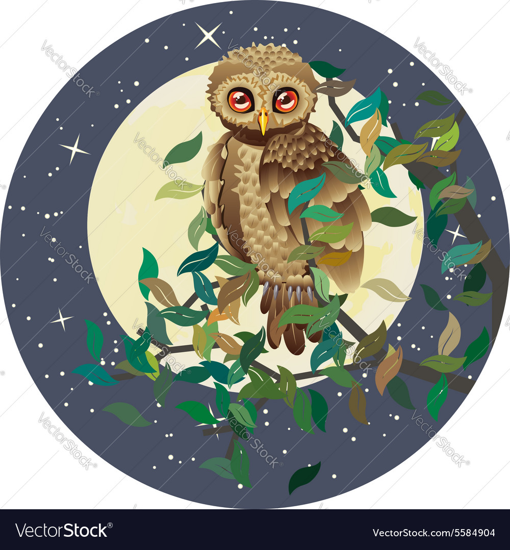 Owl and moon vector