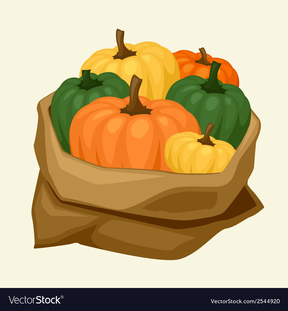Stylized sack with fresh ripe pumpkins vector