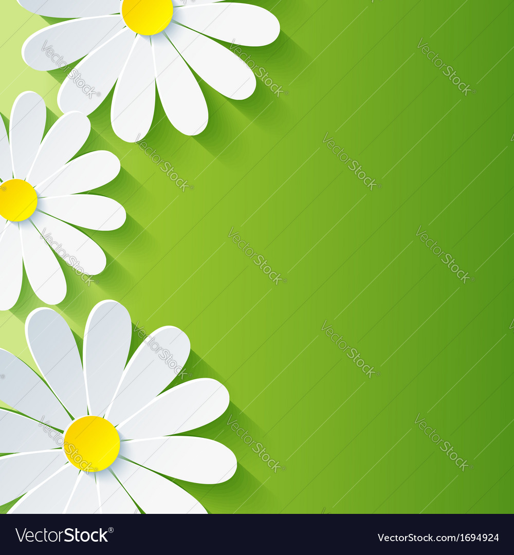 Spring abstract floral background 3d flower vector