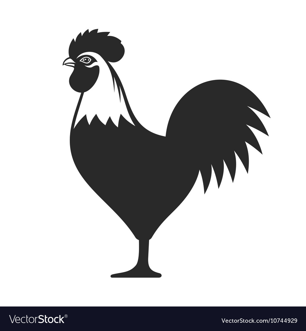 Cock icon sign rooster 2017 year symbol vector