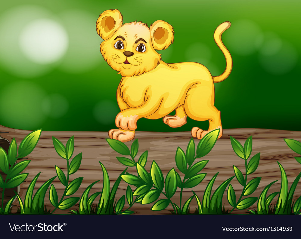 A tiger walking above the wood vector