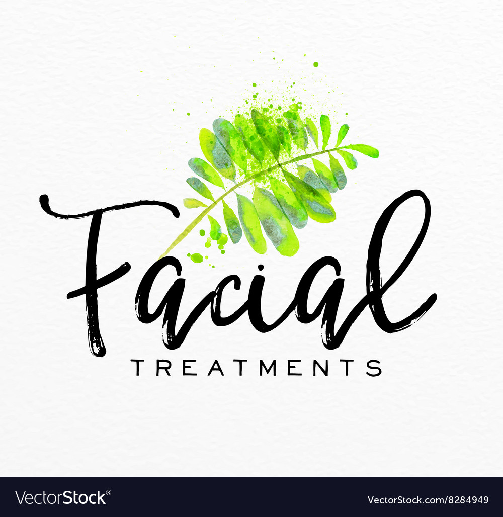 Beauty natural spa leaf vector