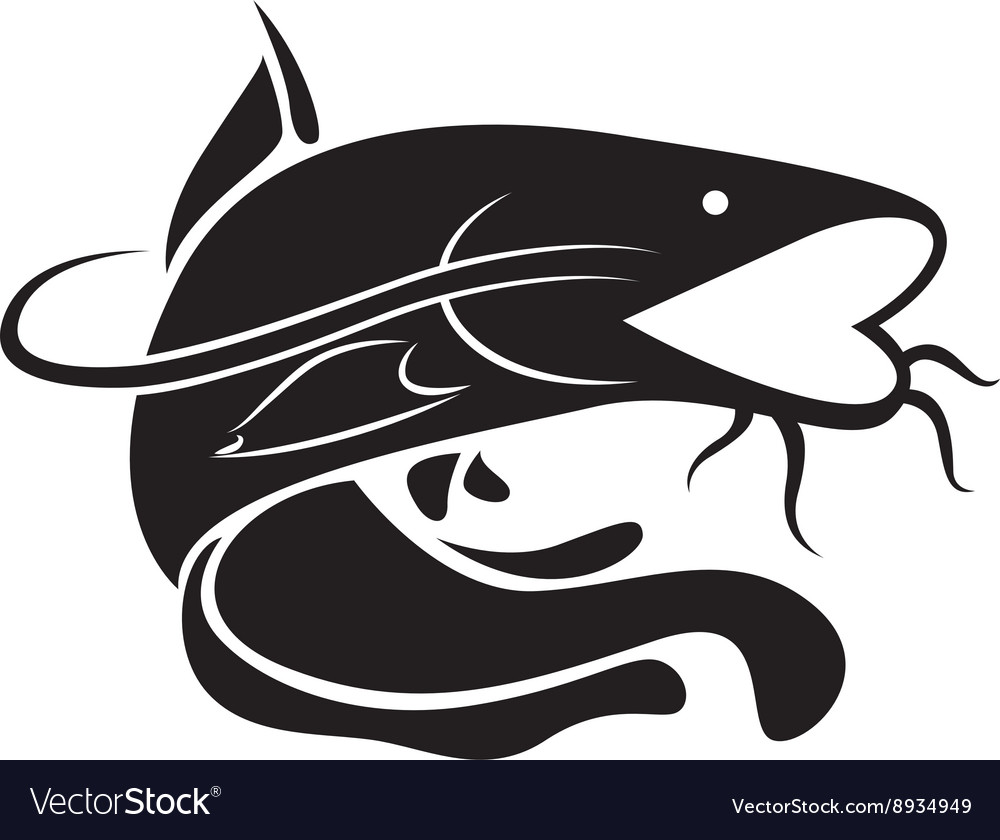 Graphic catfish vector